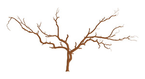 Dead Tree Branches Designs