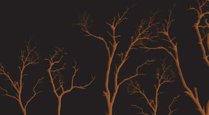 Dead Tree Branches Shapes