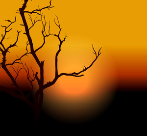 Dead Tree Halloween Background