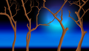 Dead Tree Night Background