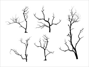Dead Tree Silhouettes