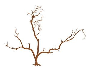 Dead Tree Stem