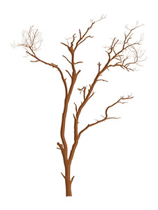 Dead Tree Vector Shape Design