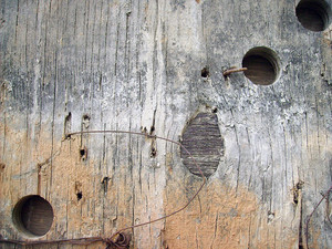 Decayed_old_wood_texture
