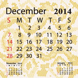 December 2014 Calendar Albino Snake Skin