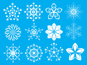 Decorative Floral Snowflakes