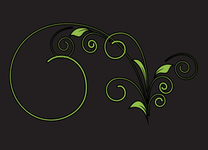 Decorative Flourish Vector Shape Design