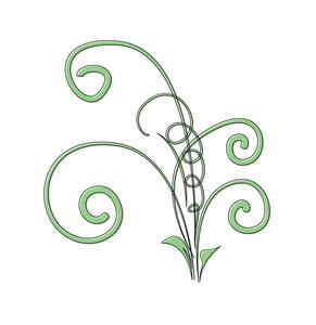 Decorative Flourish Vector