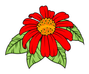 Decorative Red Flower