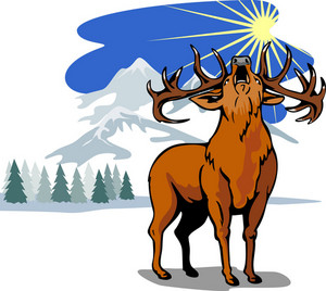 Deer In The Snow Mountains