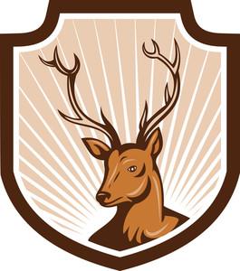 Deer Stag Buck Antler Head Shield