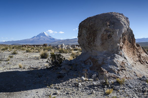 Desert rock and vegetation before distant mountains