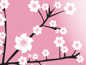 Design Elements On Pink Background