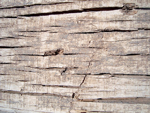 Distressed_old_wood