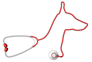 Dog-shaped Stethoscope