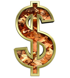 Dollar Sign From Autumn Gold Alphabet Set