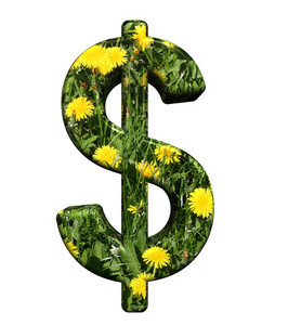 Dollar Sign From Floral Alphabet Set