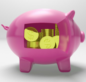 Dollars In Piggy Shows Rich American Fortune