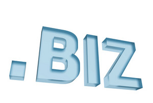 Dot Biz Ltd Domain