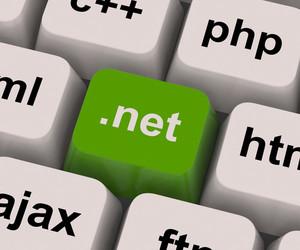 Dot Net Key Shows Programming Language Or Domain