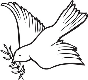 Dove Vector Element
