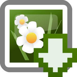 Download Photo Tiny App Icon