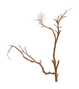 Drawing Art Of Dead Tree