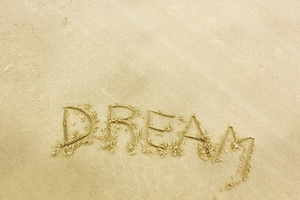 Dream San Writting