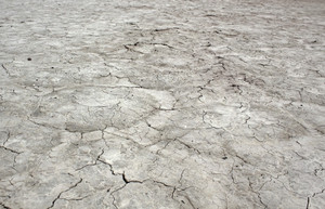 Dry Crack Land