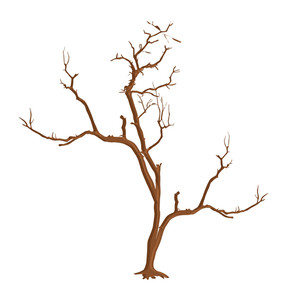 Dry Dead Tree Shape Vector