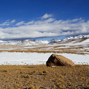 Dry scrub in a rocky, snowy field before distant mountains