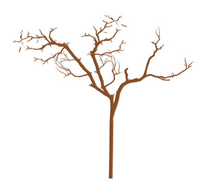 Dry Tree Branches Designs