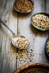 Sprouted Red And White Quinoa