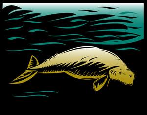 Dugong Manatee Or Sea Cow