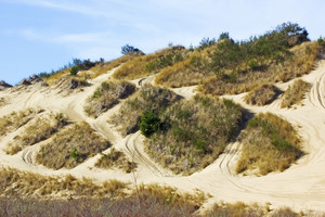 Dunes Area
