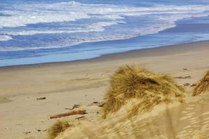 Dunes Sea