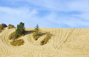 Dunes Valley