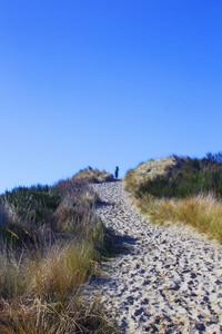 Dunes Way