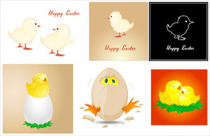 Easter Chicken Vectors