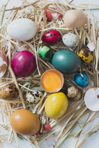 Easter Eggs In The Nest
