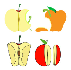 Eaten And Half Apples Vector
