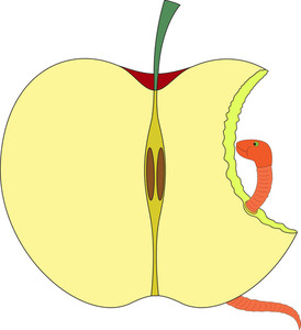 Eaten Apple Shape With Worm