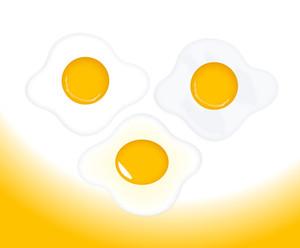 Egg Yolk Vectors