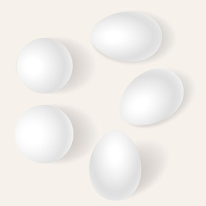 Eggs Set Vectors