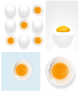 Eggs Vector Illustrations