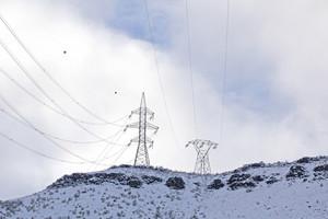 Electric Poles 165