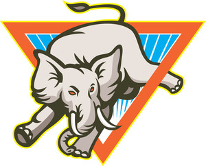 Elephant Jumping Bucking Triangle
