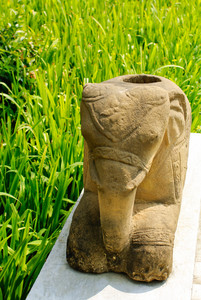 Elephant sculpture on rice field background