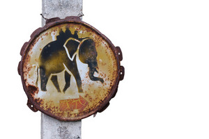 Elephant Wanring Sign
