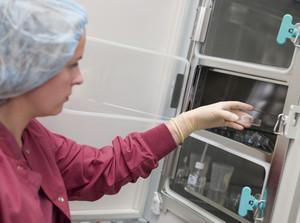 Embryologist putting sample into incubator in laboratory